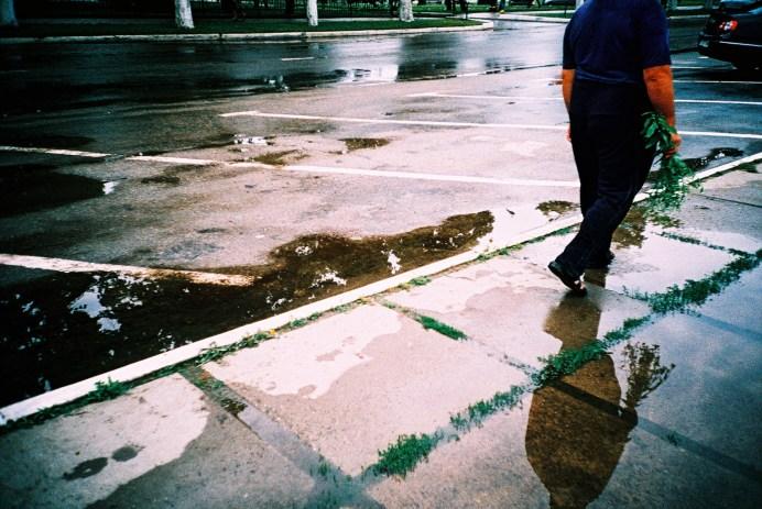 pavement_web