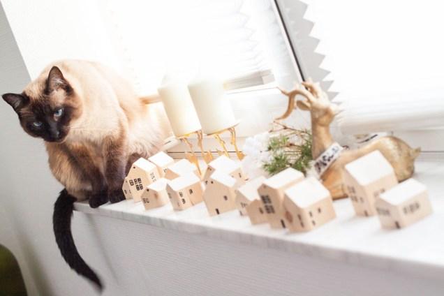Holzhäuschen und Katze