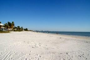 Kosmopolo | Florida - Februar 2015 image 16