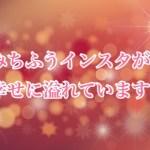 北翔海莉さん&妃海風さんインスタが幸せすぎる!(クリスマスディナーショー)