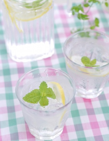 ninpu-drink