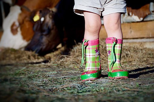雨の日 長靴 手伝い