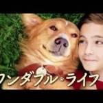 【わんこ好きに送る】映画「僕のワンダフルライフ」公開日・前売りは?