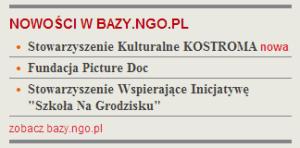 Print Screen z aktualności  bazy.ngo.pl