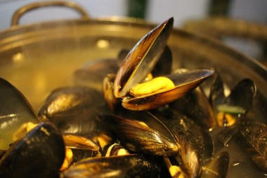 mussels-in-bath-678142_960_720