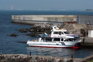 第二海堡停泊中のクルーズ船