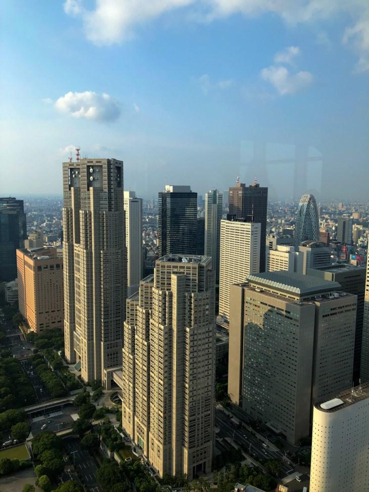 パークハイアット東京ニューヨークバー入り口付近から外の眺め 都庁