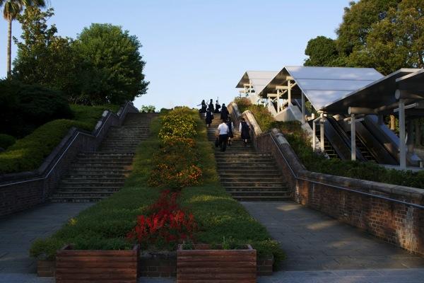 階段の花壇