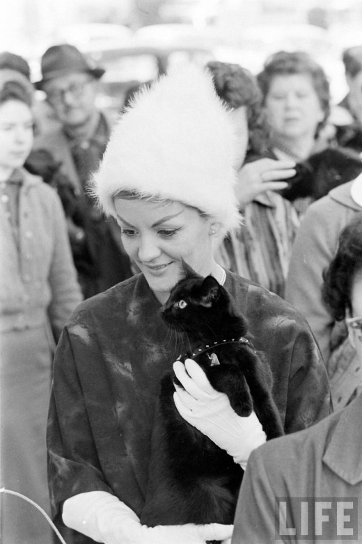 Black Cat Auditions In Hollywood, 1961 (8)