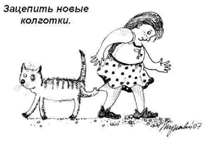 кошачьи правила этикета (4)