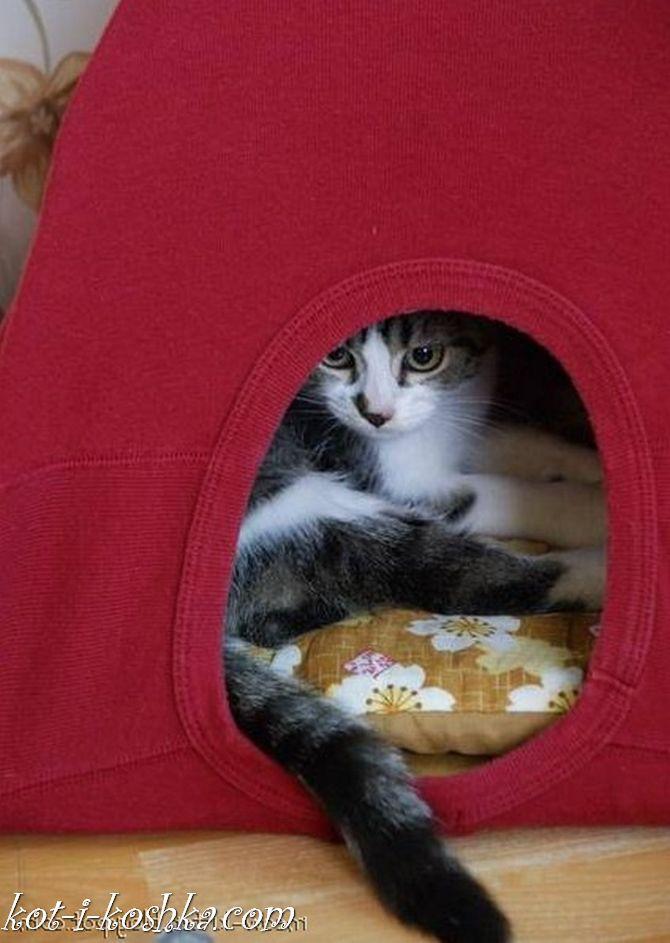 домик для кота (18)
