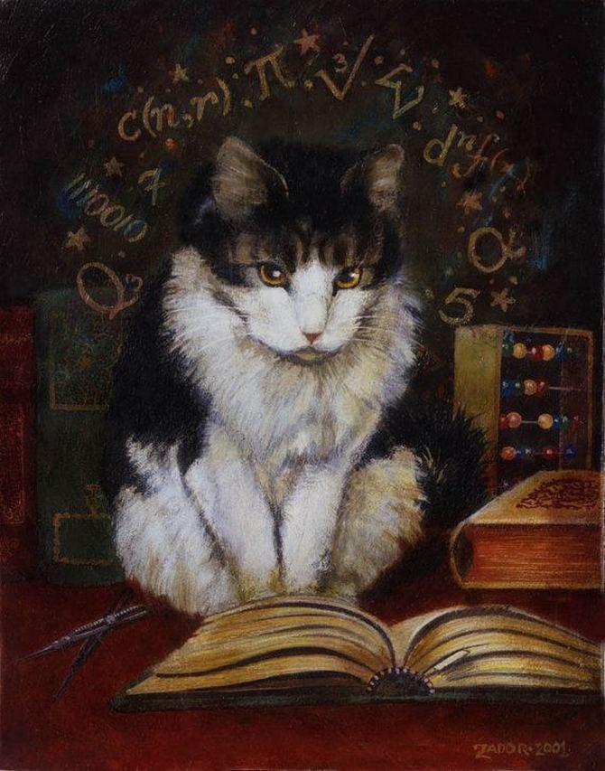 читающий кот (8)