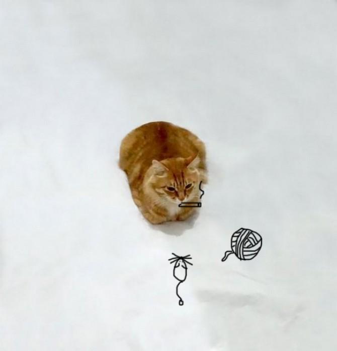 дорисуй кота (6)