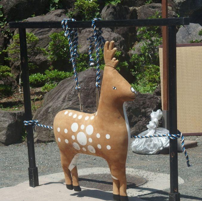 鎌倉宮 草鹿式 鹿の的