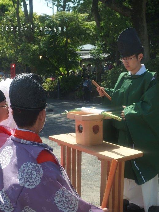 鎌倉宮 草鹿式 菖蒲の花が運ばれました。