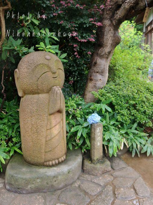 長谷寺 地蔵像と紫陽花