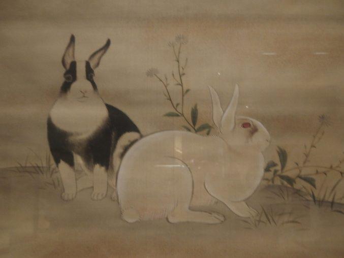 森微山「兎図」山種美術館所蔵