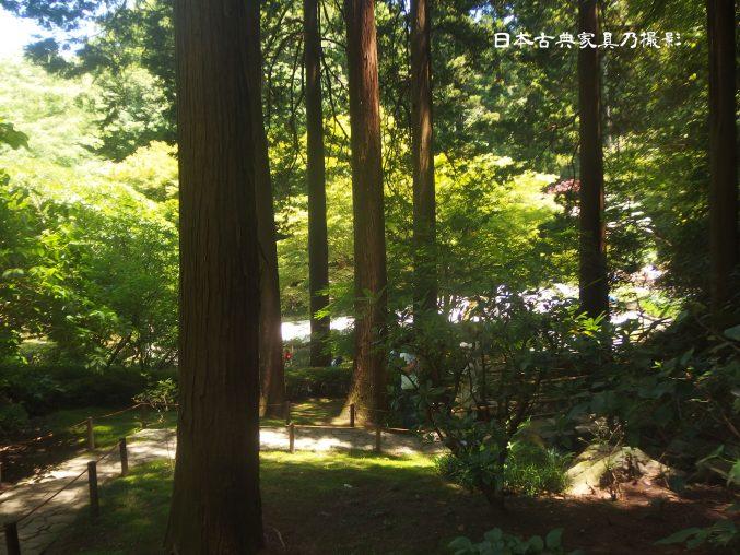 明月院 本堂後庭園 滝庭