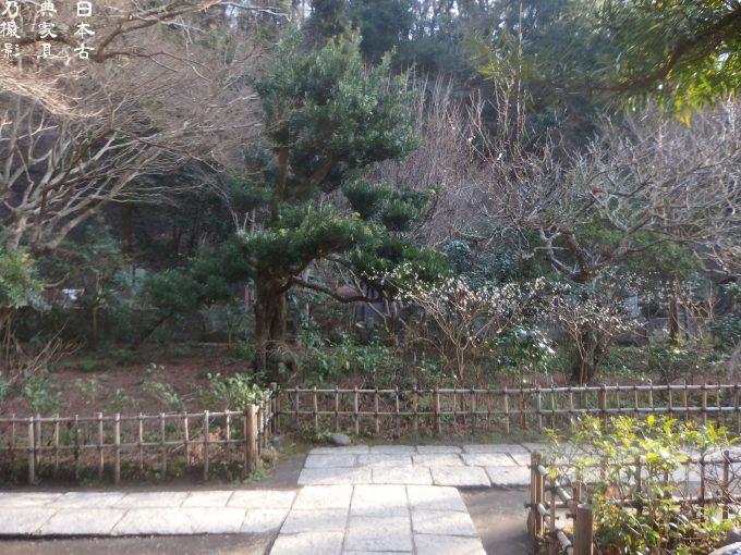 円覚寺 黄梅院 庭