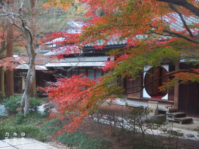 明月院 後庭園 丸窓 紅葉