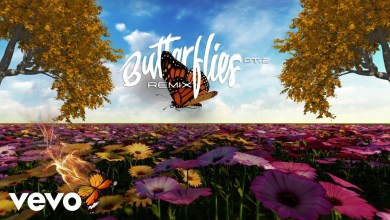 Queen Naija x Wale - Butterflies Pt. 2 (Wale Remix) Lyrics