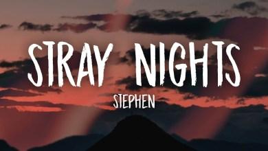 Photo of Stephen – Stray Nights Lyrics
