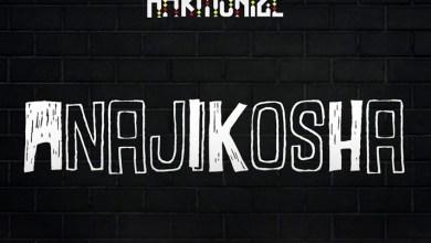 Photo of Harmonize – Anajikosha