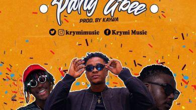 Photo of Krymi – Party Gbee Ft Kofi Mole & King Maaga