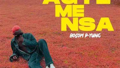 Bosom P-Yung - Agye Me Nsa