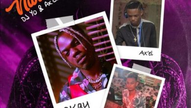 Photo of CKay Ft DJ Yo! & AX'EL – Love Nwantiti (Remix)