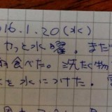 日記の一部