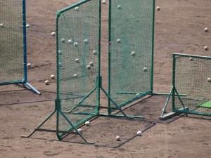 野球 ネット