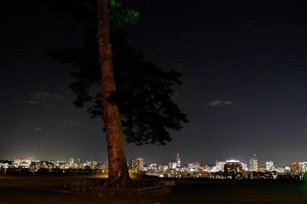 仙台の青葉城址公園の夜景の写真