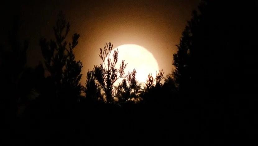 お月様の写真