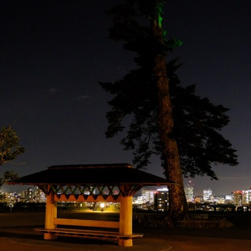仙台城址公園の夜景の写真