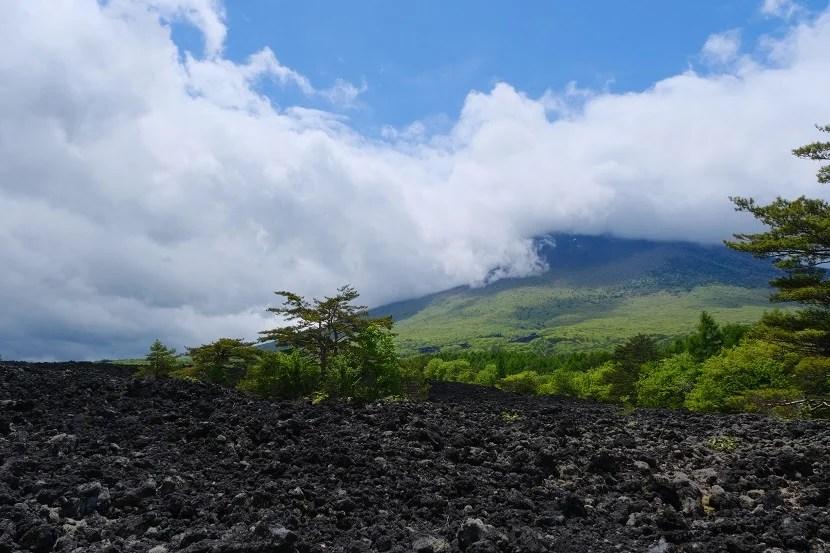八幡平溶岩流後の写真
