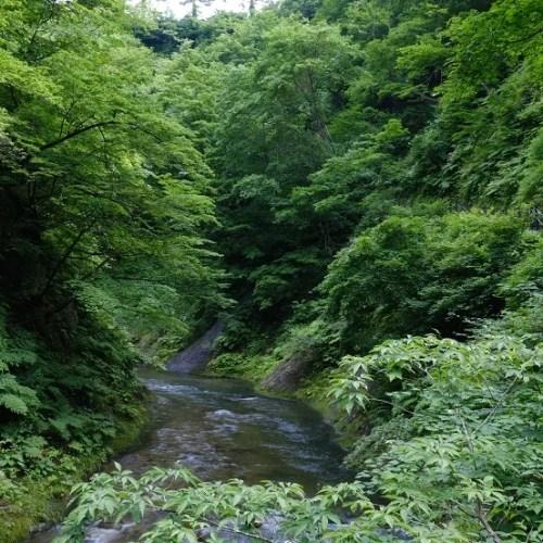 鳴子渓谷の7月の風景写真