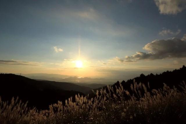 十国峠のススキの写真