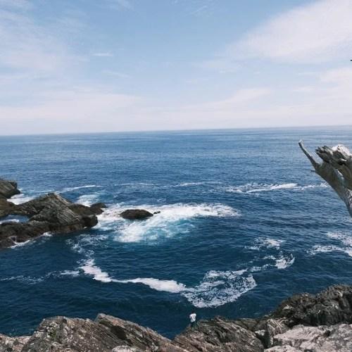 唐桑半島巨釜半造の夏の風景写真