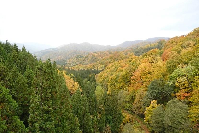 栗駒山須川側の紅葉の写真