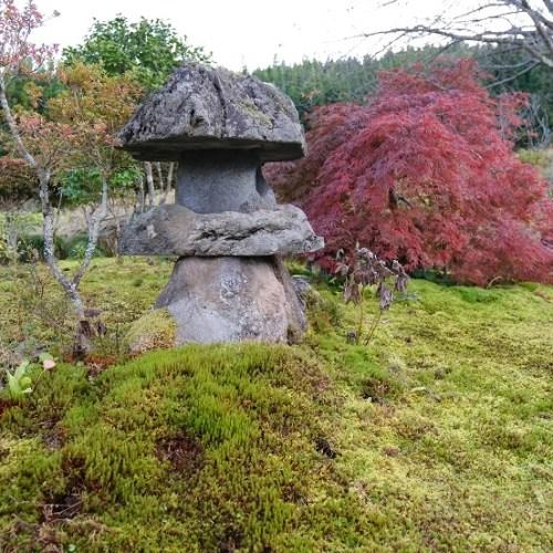 10月の庭の写真