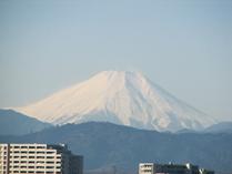 国語研究所屋上から見た富士山