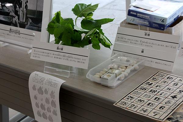 れきみん展示(立川の養蚕とおかいこ文化)