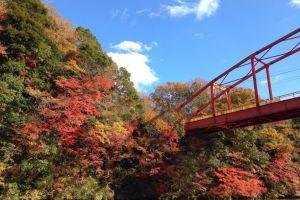 亀山湖紅葉
