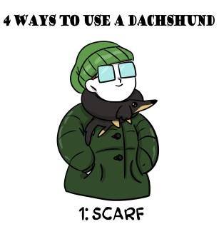 4 ways to use a Dachshund