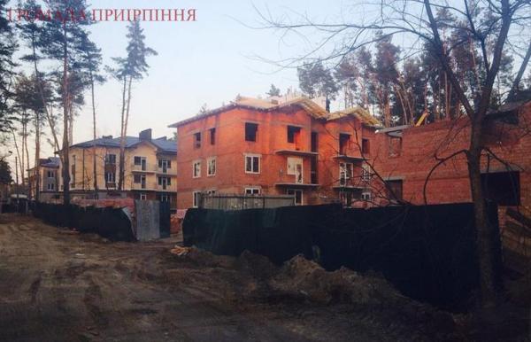 будинки