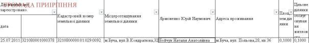 Бойчук, ділянка