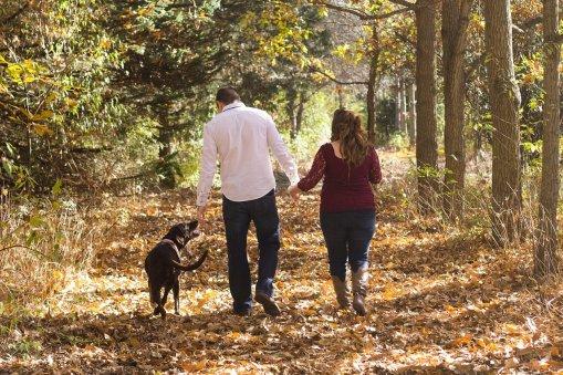 Vuokramökin ympäristössä on metsäisiä polkuja, joissa on hyvä liikkua lemmikin kanssa