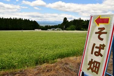 福島県喜多方市雄国山麓に広がるそば畑2017