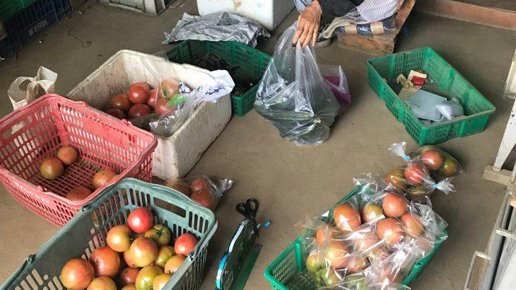 新羽の野菜直売所